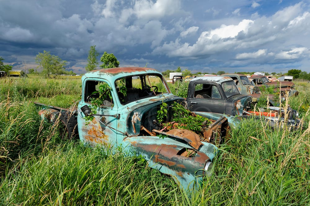 Old Chevy pickup trucks in the high summer grass of a Minnesota junkyard, just before a summer thunderstorm on the prairie.