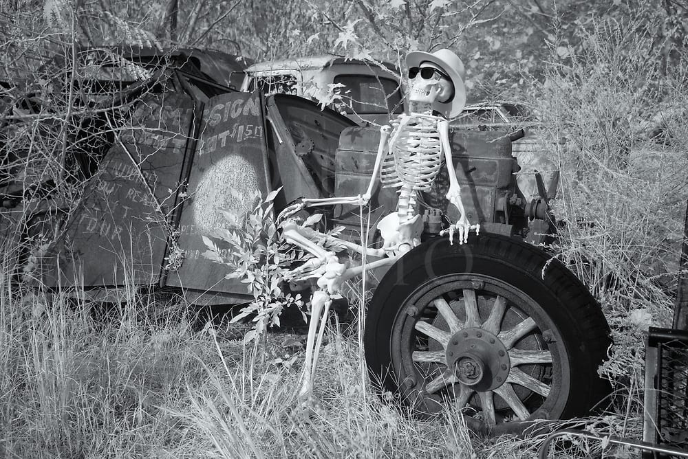 Junkyard Skeleton Sun Tanning Outdoors 14573 Dierks