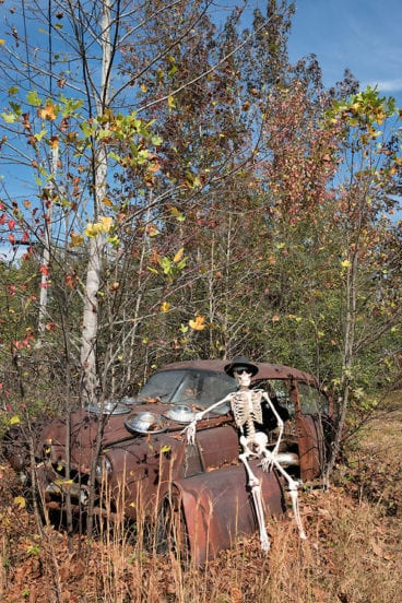 A little skeleton humor: a skeleton suntanning on a junkyard car while taking a break in the afterlife.