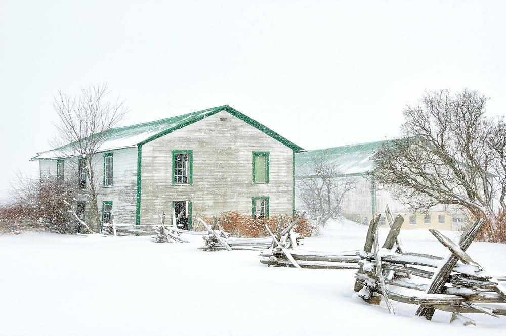 A winter barn landscape in heavily falling snow at a Pennsylvania farm.