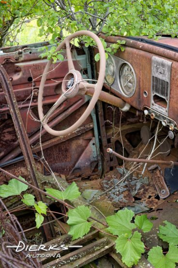 An old Dodge car stripped down and overgrown in a junkyard.