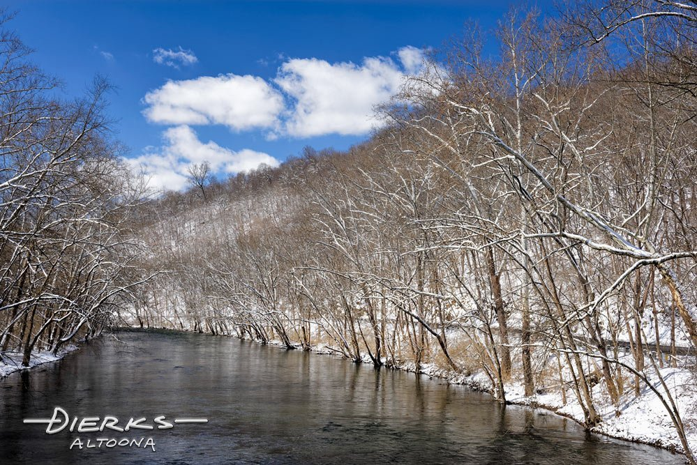 Sycamore trees along the Juniata River at Mt Etna in a winter landscape in Pennsylvania.