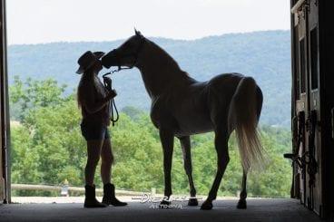 Woman kissing her horse in silhouette in open barn door.