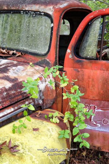 A vintage Ford F-150 pickup truck sits fading away in an old rural junkyard.