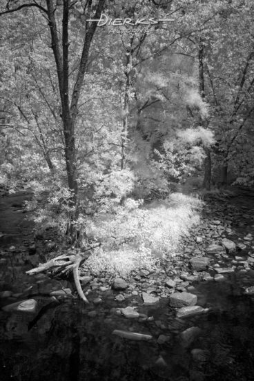 A narrow rocky island with few tall trees holds out against the constant water flow in the middle of the Juniata River in central Pennsylvania. A black and white infrared picture taken along the Lower Trail at Mt. Etna.