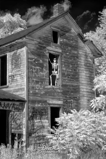 A skeleton named Jake McCall looks out a window of his haunted house in the spooky woods.