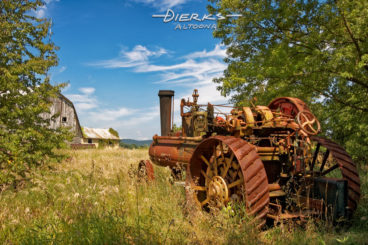 An old fashioned steam powered farm tractor sitting the high summer weeds of a junkyard, rusting away.