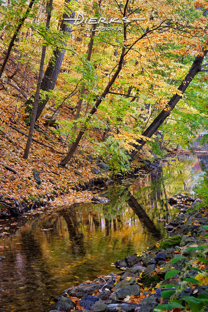 Colorful Fall leaves and water reflections in Mill Run stream that flows through Altoona, Pennsylvania.