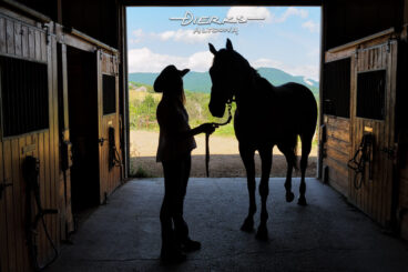 A woman with her horse in the stable getting ready to ride on a summer day, a barn door silhouette.