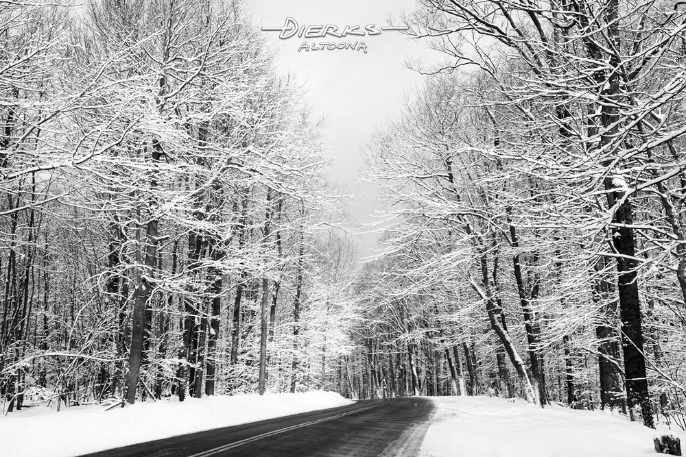A twisting mountain road in Pennsylvania with all the tree branches covered in snow, a black and white winter landscape photo.